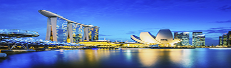 eGov Singapore: award winning leader in digital government